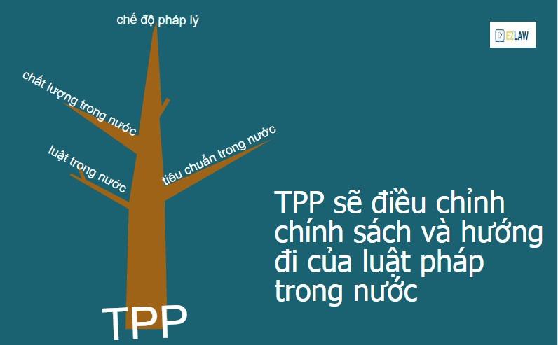 TPP Hội nhập Châu Á Thái Bình Dương 7
