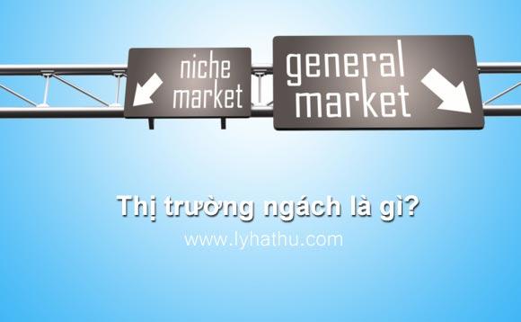 Thị trường ngách là gì